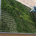 Custom green wall system